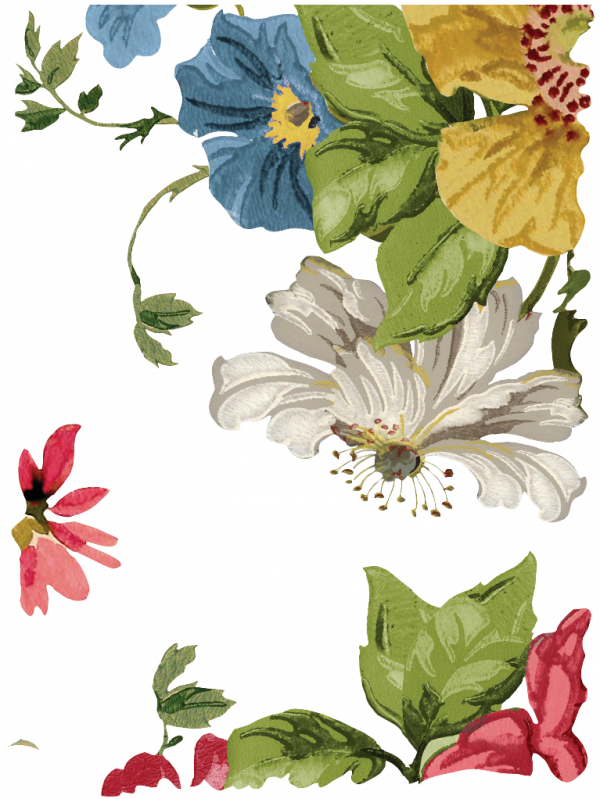 m3vdjv8Q 1 Wall Flower Transfer - new format