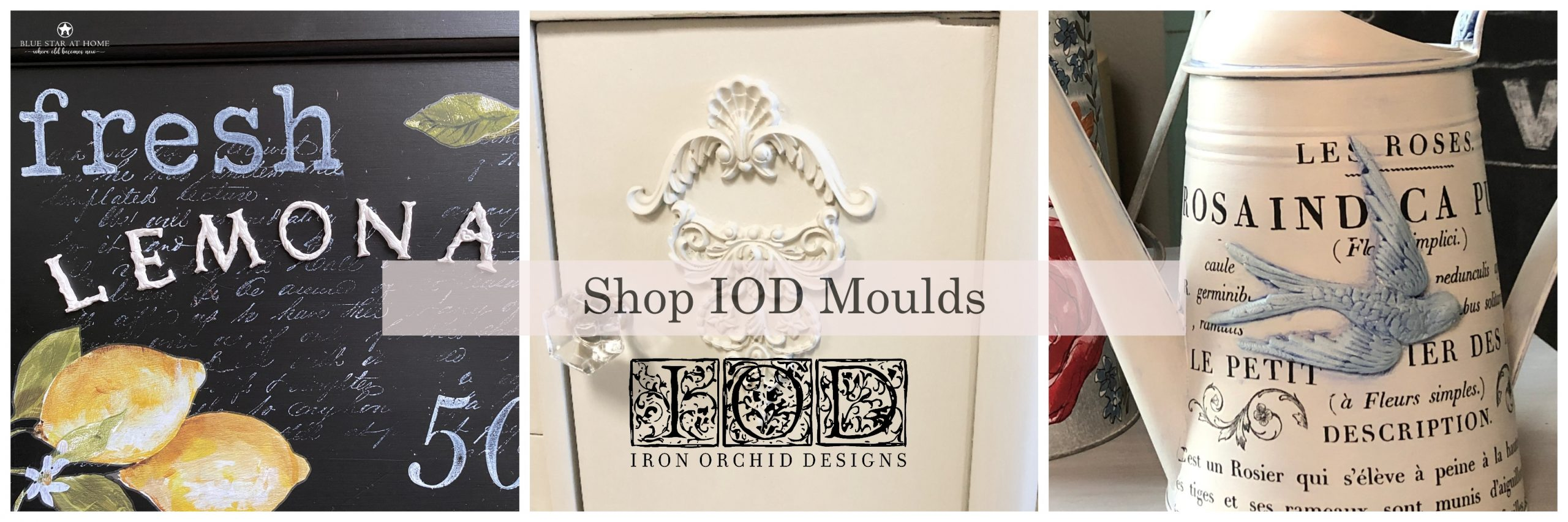 Blue Star at Home Shop IOD Moulds