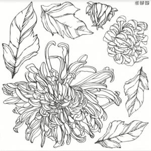 Chrysanthemum IOD stamp