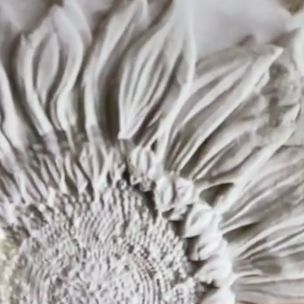 Screen Shot 2021 06 11 at 9.36.28 PM Sunflowers Mould